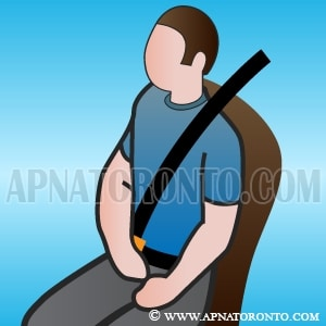 drivers responsible for their passengers buckling up