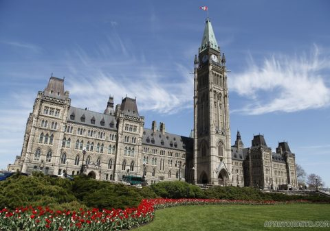 The Canadian Citizenship: Common Q & A You Need To Know